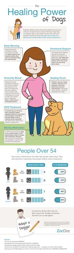 The healing power of dogs #infographic