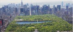 Qué es un Ecosistema Urbano