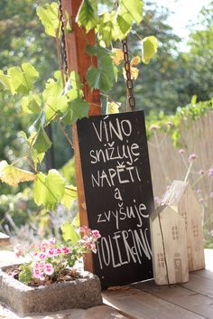 Carpe Diem, Motto, Funny Texts, Wedding Designs, Wedding Planner, Pergola, Wedding Decorations, Relax, Jokes