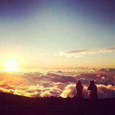 Mini guide to Hawaii
