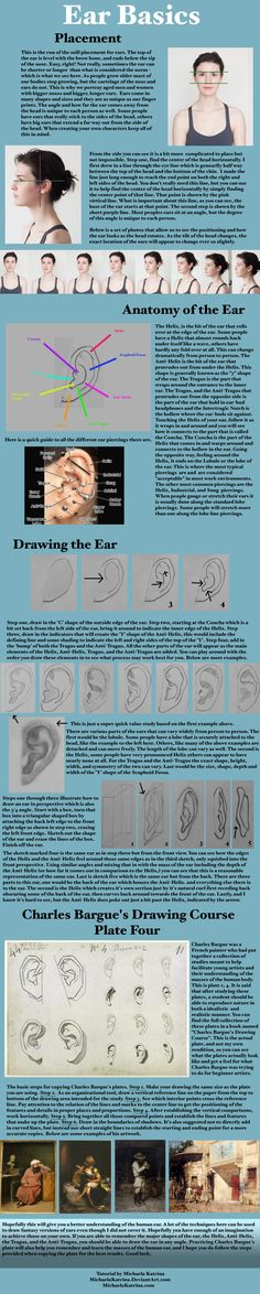 """Here is a quick over view of the Loomis Method, this method can also be found explained in detail in """"Drawing the Head and Hands"""" by Andrew Loomis. This book will explain in detail the steps as wel. Fig Drawing, Plate Drawing, Body Drawing, Drawing Faces, Andrew Loomis, Anatomy Reference, Drawing Reference, Charles Bargue, How To Draw Ears"""