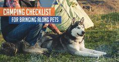 Camping Checklist for Bringing Along Pets - Mountain House Blog