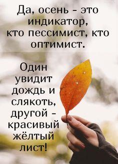 Да, осень - это индикатор, кто пессимист, кто оптимист. Один увидит дождь и слякоть, другой - красивый жёлтый лист! #осень #мотивация
