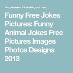 Funny Free Jokes Pictures: Funny Animal Jokes Free Pictures Images Photos Designs 2013