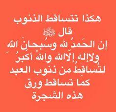 Islam Facts, Hadith, Food, Meals