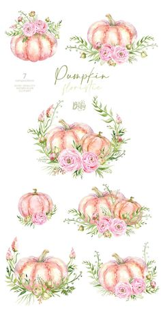 Pumpkin Vase, Pumpkin Flower, Wreath Watercolor, Watercolor Cards, Watercolor Drawing, Pumpkin Tattoo, Sleeping Bunny, Fall Clip Art, Ranunculus Flowers