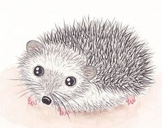 baby hedgehog on Etsy, a global handmade and vintage marketplace.
