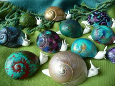 Painted Snails