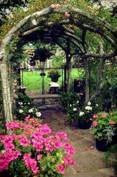 rustic arbour beauty