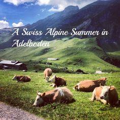 7 Wonderful Things to Do in Summer in Adelboden, Switzerland