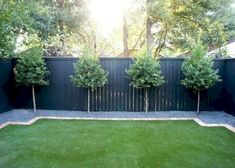 Amazing Garden Fence And Gates Design Ideas - Interior and Exterior Desi . Amazing Garden Fence And Gates Design Ideas - Interior and Exterior Desi . Backyard Trees, Backyard Privacy, Backyard Fences, Garden Fencing, Diy Fence, Veg Garden, Privacy Trees, Garden Fence Paint, Home Fencing