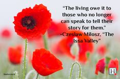 Remembrance Day Quotes: Words To Honour Veterans