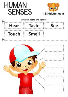Teach Kids about the Human Body - 5 senses: touch, see, smell, taste, hear. Science activities for Kids. Five Senses Preschool, 5 Senses Activities, Preschool Science Activities, Kindergarten Science, Free Preschool, Preschool Printables, Kindergarten Worksheets, Preschool Activities, Free Printables