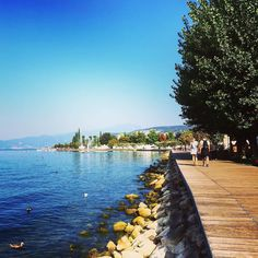 #Repost @bozz_m  September Day  - #lakegardaphotography #gardaconcierge #LakeGarda #photoGC #summer #gardasee #lagodigarda #instagarda #gardaoutdoors #fotolaghiditalia #igersverona #lifegarda #lovelygarda #gardamio #ohmygarda #gardaveneto #gardaveneto #bardolino #blue #sky #clouds #water #panorama #sunset #igersveneto #igersitalia #beautifulview #amazingview