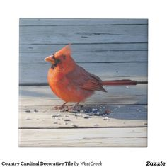 Country Cardinal Decorative Tile