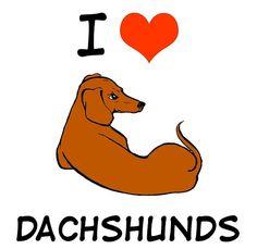 Dachshund Quotes, Dachshund Art, Crusoe The Celebrity Dachshund, Dashund, Dog Jokes, Cute Funny Animals, Dog Art, Dog Training, Puppy Love