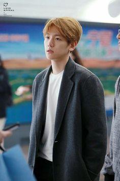 Imagem de baekhyun and exo