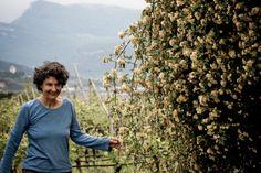 Elisabetta Dalzocchio Fruit