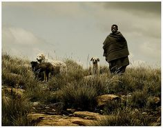 Africa    Sani Pass, Lesotho.    ©Leschick on flickr South Afrika, Like A Local, Continents, Where To Go, Adventure Travel, Followers, Tourism, Southern, Hiking