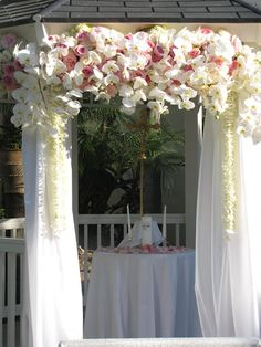 white orchids on a gazebo