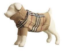 burberry / dog sweater