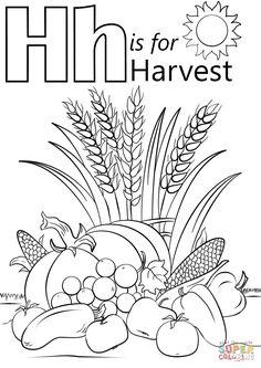 Letter H is for Harvest