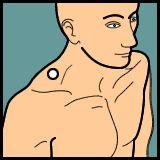 Neck Acupressure » PointFinder » Mobile Enabled