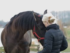 Pure Horse Sense   All in Your Head