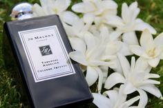 Pink Pigment – Jo Malone London Tuberose Angelica Perfume Review