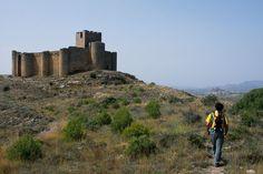 Castillo de Davalillo (San Asensio, La Rioja)