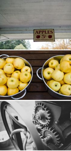 Freshly pressed apple cider + an outdoor Fall dinner for 20 // Extravagant Dinner No. 3