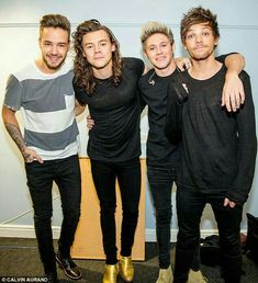 It was recently revealed that Harry Styles, Louis Tomlinson, Zayn Malik, Niall Horan and Liam Payne — known as One Direction — are worth million. One Direction Harry, One Direction Fotos, One Direction Wallpaper, One Direction Pictures, 0ne Direction, Direction Quotes, Zayn Malik, Niall Horan, Nicole Scherzinger