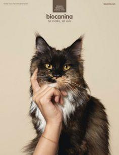 50 publicités créatives d'Avril 2013 | Publiz - Inspiration graphique et publicité créative