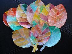 herfstbladeren   gemaakt van koffiefilters  lijm en waterverf