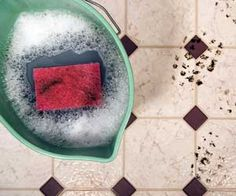 How to clean paint off kitchen floors. Yes, I got red paint on my floors!! Red is a beast!!!