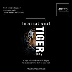A tiger skin looks better on a tiger, not as a decorative item on your wall. Happy International Tiger Day..! #Motto #Tiles #mottogroup #Ceramic #FloorTiles #slabtiles #CeramicTiles #CeramicTile #SlabTile #Slab #Tile #Marbles #MarblePlus #TigerDay2021 #TigerDay #Tiger #wildlife #animals #SaveTiger Tiger Skin, Motto, International Days, Surface, Marbles, Tiles, Wildlife, Happy, Wall