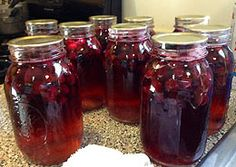 Here's your chance to learn how to make homemade concord wine, even from canned concord juice. See the recipe for all the winemaking ingredients and instructions you will need! Making Wine At Home, Make Your Own Wine, How To Make Beer, How To Make Homemade, Wine Making, Homemade Wine Recipes, Grape Recipes, Homemade Liquor, Canning Recipes