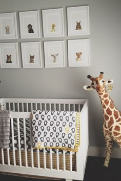 "Land of Nod Peep Crib Bedding in a ""wild"" nursery."