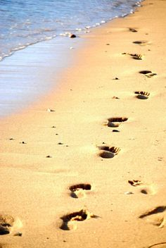 Footprints in the Sand. Ocean Beach, Ocean Waves, Beach Day, Footsteps In The Sand, Ocean Storm, Dream Beach Houses, Peaceful Places, Camping And Hiking, In The Tree