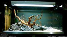 Hardscape @ Zoogrande. Cichlid Aquarium, Aquarium Aquascape, Aquascaping, Aquarium Landscape, Nature Aquarium, Aquariums, Aquarium Design, Aquarium Setup, Tropical Fish Aquarium