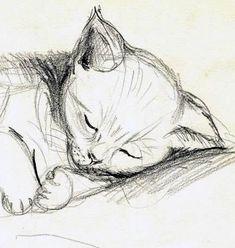 """Karina Fulara """"Meine kleine Mizi"""" /Bleistifzeichnung - My best shares Cat Drawing, Drawing Sketches, Painting & Drawing, Cute Animal Drawings, Animal Sketches, Pencil Art, Pencil Drawings, Sea Creatures Drawing, Dibujos Zentangle Art"""