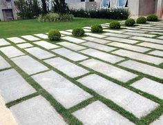 Large, staggered pavers with interspersed box balls add presence.