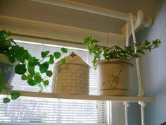 SAVANNAH GRANNY: Sunny Window Shelf