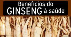O ginseng é uma das ervas mais populares, conhecida por seu uso tradicional para melhorar a memória e o nível de energia. https://portuguese.mercola.com/sites/articles/archive/2016/08/22/beneficios-ginseng.aspx