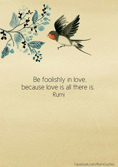 """Be foolishly in love, because love is all there is"" - Rumi                                                                                                                                                                                 More"