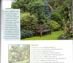 privacy planting with specific list of evergreens.....love all the different colors