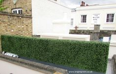 Large Artificial Boxwood Hedge made to fit onto a Hotel Roof Terrace to hide pipework