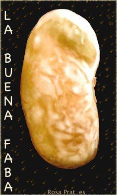 the good bean. Best Beans, Celestial, Drawings, Outdoor, Digital Image, Digital Art, Watercolor Painting, Fotografia, Outdoors