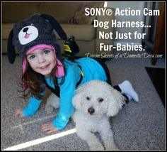 Sony Action Cam Dog Harness Not Just for Fur Babies - Future therapy sessions sold separately. (Not Sony approved, but works well on little kids too)  Read the full Sony Action Cam review plus bike and dog mounts