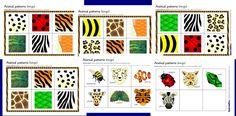 animal patterns bingo